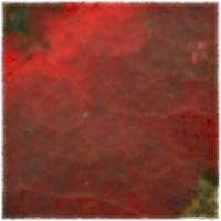 Autumnus #15